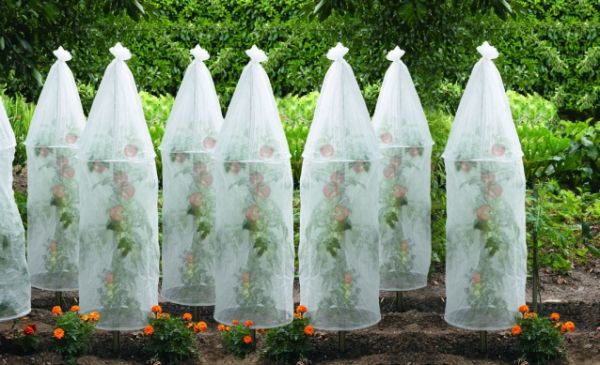 Для укрытия растений своими руками 92