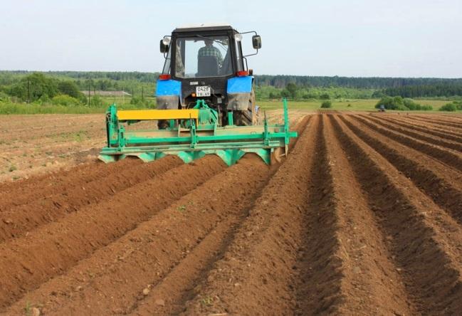 Картошка технология выращивания 76