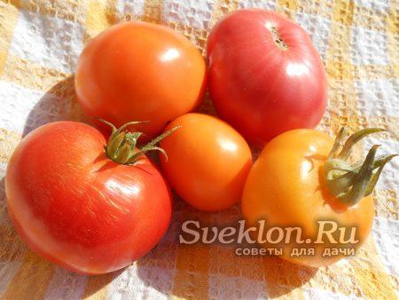 плоды томатов желтые и красные