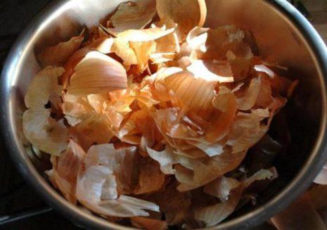 Почему у перца скручиваются листья лодочкой