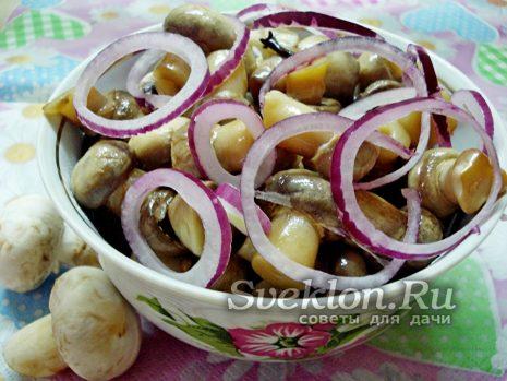 маринованные грибы шампиньоны