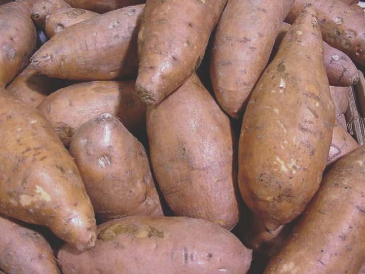 Сацумаимо - сладкий картофель - Батат