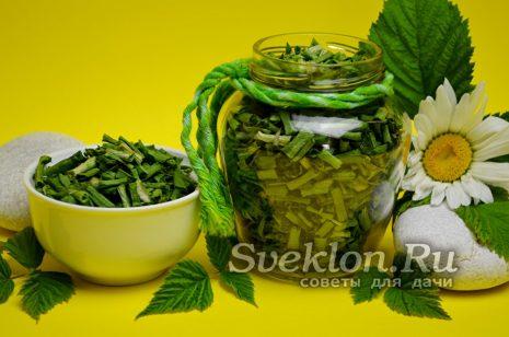 сушеный зеленый лук в банке