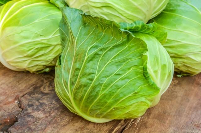Чем подкормить рассаду капусты для роста после высадки в грунт: удобрения, народные средства. Подкормка капусты в открытом грунте после посадки