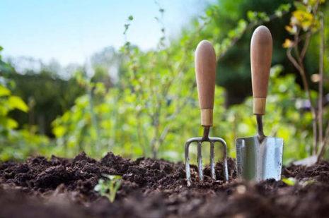 Лунный календарь  садовода, огородника и цветовода на апрель 2020 года