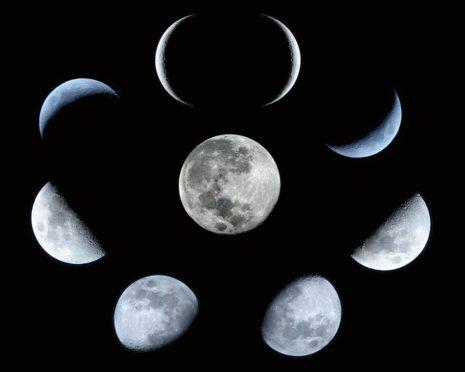 Когда и как пикировать перец в 2020 году: лунный календарь