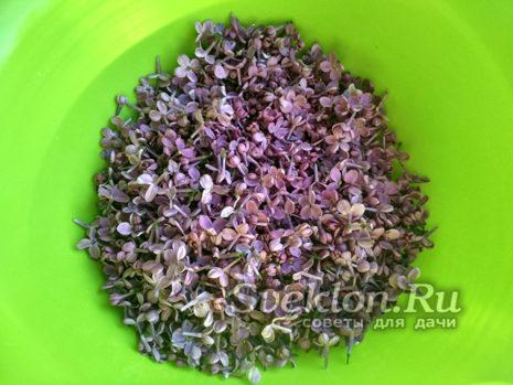 подготовить 2-3 горстки цветков сирени