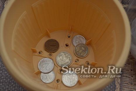 на дно горшка выложить монетки