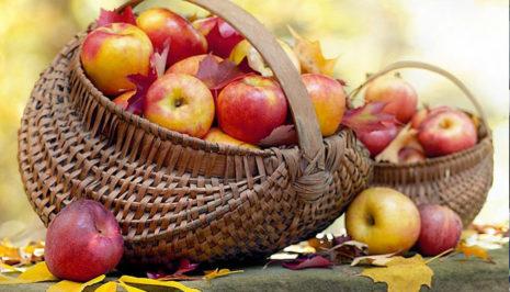 корзины яблок