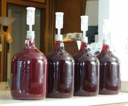 домашнее сухое вино в бутылках