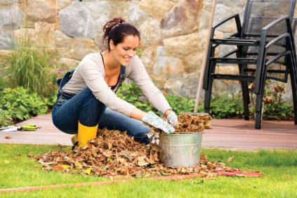 работа в саду в октябре