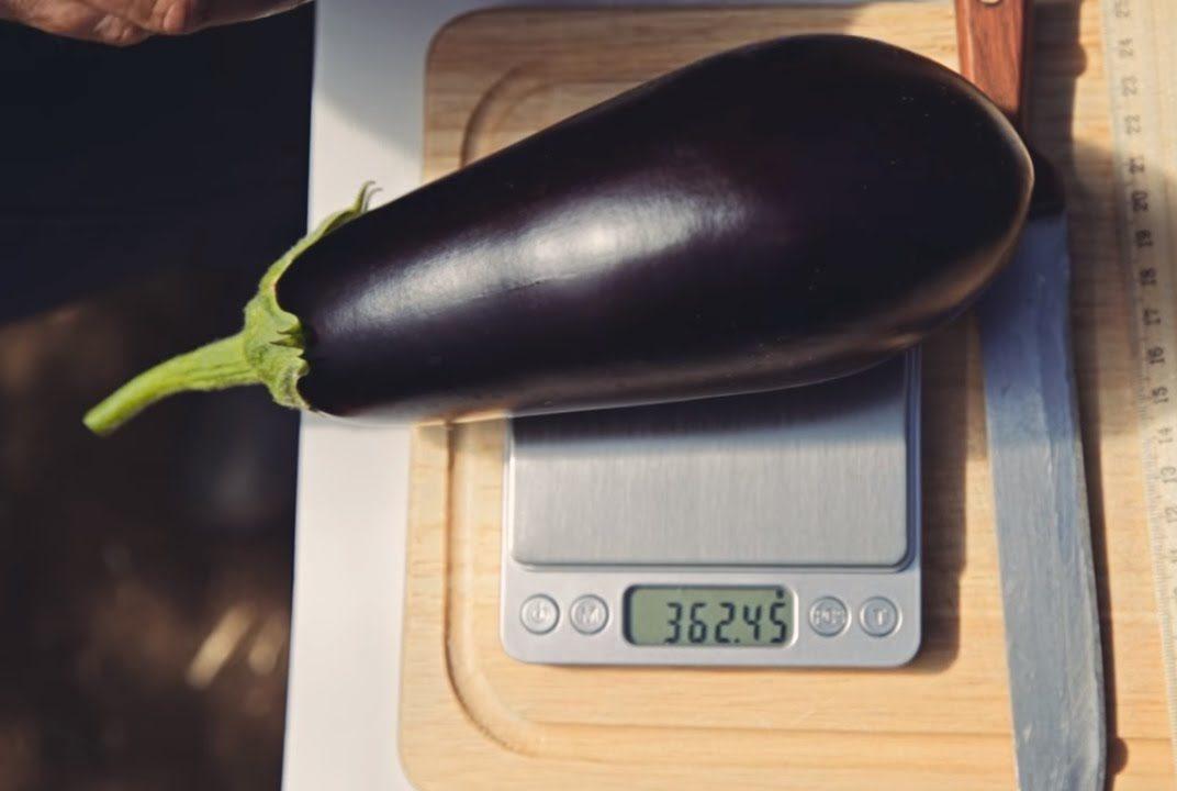 Вес плода