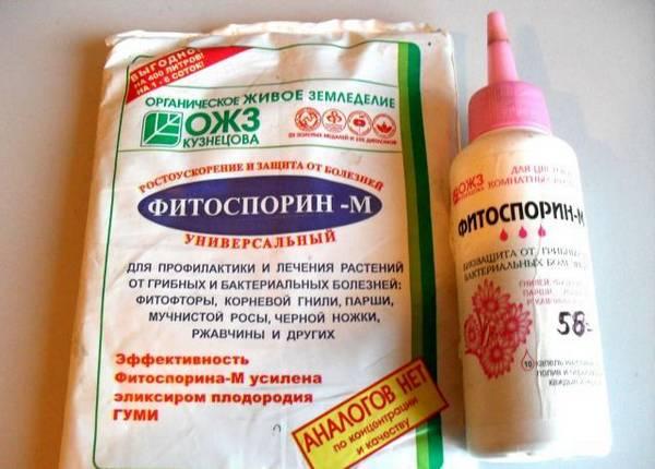 препарат фитоспорин для огорода