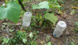 Капельный полив огурцов из бутылок