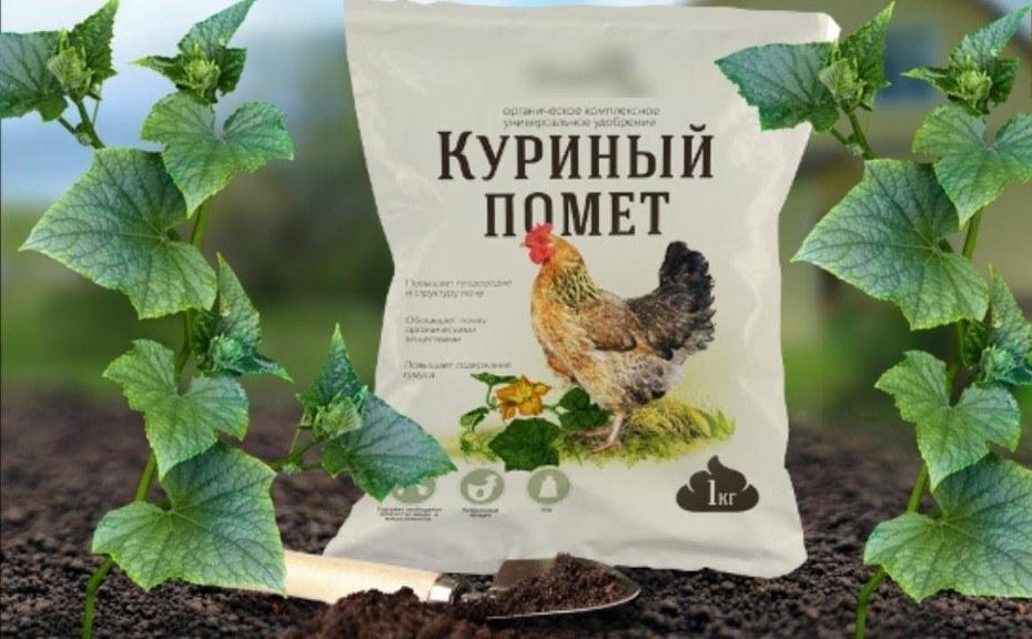 Подкормка огурцов куриным пометом