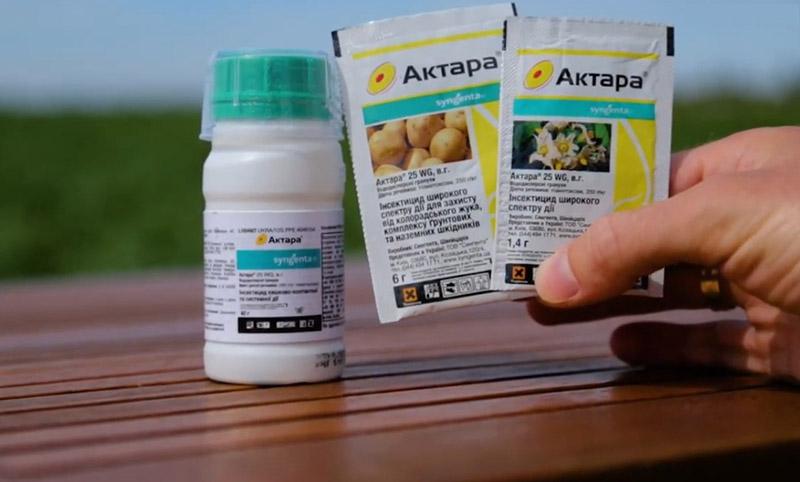 Инсектицид Актара для огурцов: описание, инструкция по применению в теплице