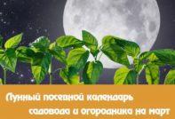 Лунный посевной календарь на март