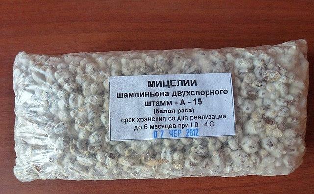 Мицелий шампиньонов