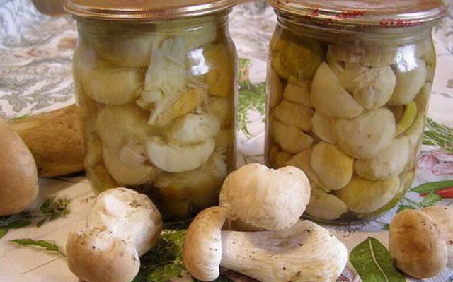 Белые грибы на зиму