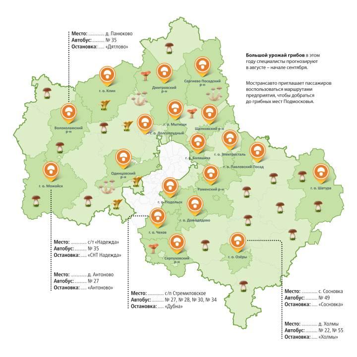 Грибные места в Волгоградской области