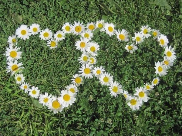 Отмечаем день семьи, любви и верности 8 июля