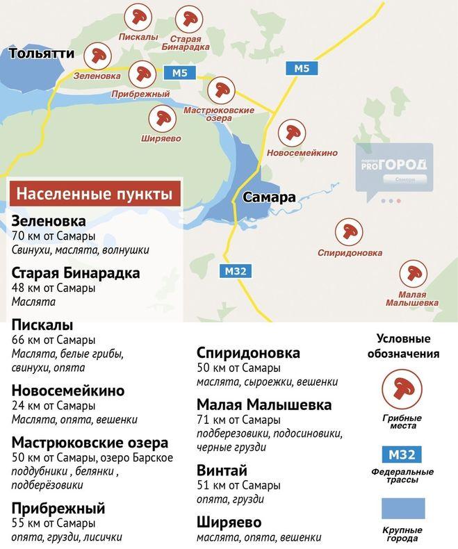 Грибы Самарской области