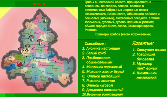 Грибная карта